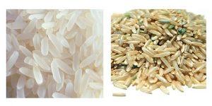 سورتر برنج