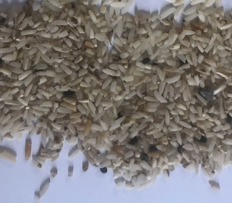 ضایعات برنج